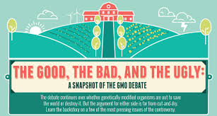 genetically modified food gmo pros and cons