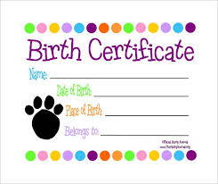Sample Birth Certificate 18 Free Documents In Word Pdf