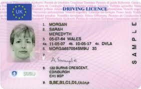 Licence Driving Driving Licence