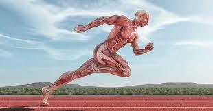 horizontal exercise