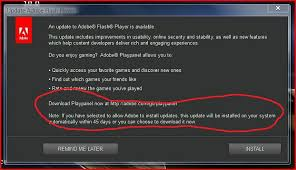 Flash player detected as installed but not play