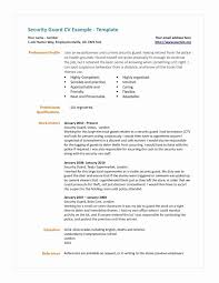 Security Resume Objective Examples Security Resume Objective Examples Luxury Security Guard Resume
