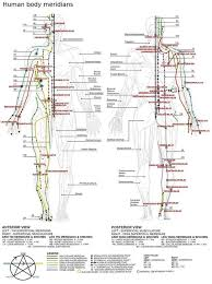 30 New Fibromyalgia Tender Points Chart Pdf Acupuncture
