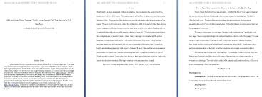 Apa Format Essay Example Paper Essay About Myself For College Independence Day Essay In