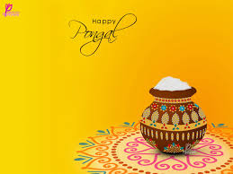beautiful pongal festival wishes card pongal wishes beautiful pongal festival wishes card