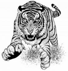 Small Picture Endangered Animal Mammals Kids Coloring Pages Free Colouring