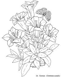 Small Picture Flower Coloring Pages Fancy Flowers Coloring Book Coloring Page