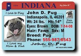 Indiana Indiana Indiana Indiana Drivers Drivers Drivers Indiana Drivers License Indiana License License Drivers License Drivers License