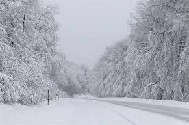 Magical Snow Scenes In Turkeys Trakya