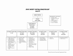 Organizational Chart For Non Profit Organization Beautiful Sample Nonprofit Organizational Chart The Modern