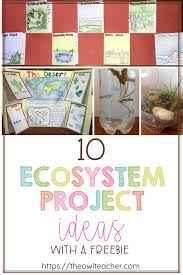 Creative Titles For Math Projects 10 Ecosystem Project Ideas The Owl Teacher