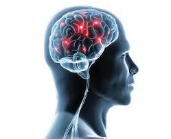 Znalezione obrazy dla zapytania Neuro