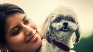 Converting Dog Years To Human Years Chart How To Figure Out Your Dog S Age