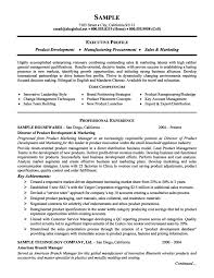 Product Management And Marketing Executive Resume Example Job And
