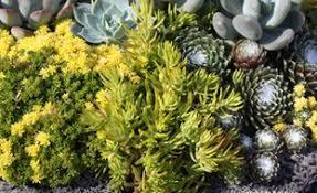 Cool 123 Cool Ideas Make Enchanted Succulent Garden On Backyard Succulent Container Garden Plans