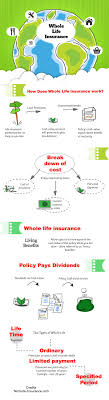 in our whole life insurnace graphic we break down the pieces of a whole life insurance