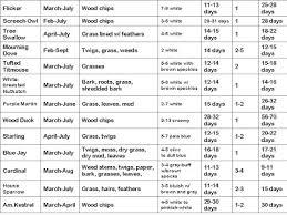 Opossum Age Size Chart Bedowntowndaytona Com
