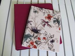 paperback writer nanonotebook for me a novel notebook is basically the depository of all the notes outlines character bios setting info research plotting and other ideas that i use