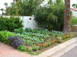 Small Picture Front Yard Vegetable Garden Ideas Home