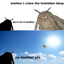 The Forbidden Lamp Moth Lamp Know Your Meme