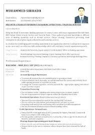 Banker Resume Samples Sample Professional Resume