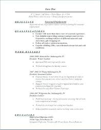 Resume Template Pdf Download Fascinating It Job Resume Samples Resumes Examples For Jobs Resumes Samples For