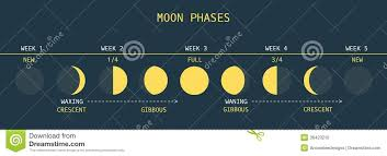 Moon Phases Stock Vector Illustration Of Cosmos Satellite