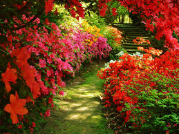 Small Picture Beautiful Garden Wallpaper Hd Wallpapers Home Images Garden Trends