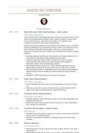 Senior Sales Representative Resume Samples Visualcv Resume Samples