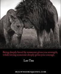 Love And Strength Quotes Cool Lao Tzu Quote About Love Awesome Quotes About Life