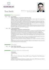 New Resume Styles New Resume Styles Good Resume Objective Resume
