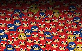 ugandan knuckles wallpapers wallpaper