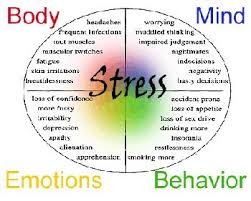 what is stress management definition benefits video stress effects on body and mind