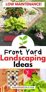 landscaping ideas for beginners low