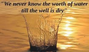 Water Quotes Custom Best Quotes About Water Water Is The Hub Of Life On Planet Water