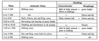 Feeding Regimes For Dairy Animals A Short Guide