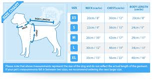 Pet Clothes Size Chart Dog Sweater Size Chart By Breed Best Picture Of Chart