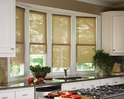 Kitchen Shades Roman Shades Gallery Danmercom