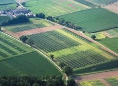 Земельное право дипломные курсовые работы рефераты на заказ  Готовые дипломы и курсовые работы по Земельному праву