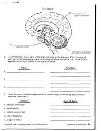 Sun Worksheets For First Grade Info Layers Of The Printable Diagram ...