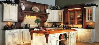 custom kitchen cabinets dallas. Amazing Modern Kitchen Cabinets Dallas Tx Custom Beauteous Garland 1