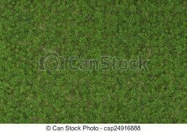 wild grass texture. Wild Grass Texture - Csp24916888 Wild