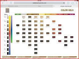 Redken Hair Color Chart Shades 156435 Redken Color Gels