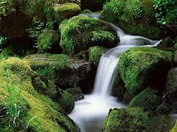 اجمل صور الطبيعة images?q=tbn:ANd9GcQ