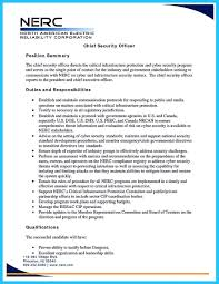 Modern Cyber Security Resume Buzzwords Composition - How To Write A ...