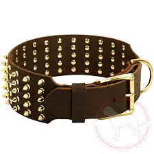extra wide spiked collar with brass fittings for large dogs