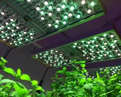 Horticultural Lighting Uk Phytofy Rl Tunable Led Grow Light From Osram Professional