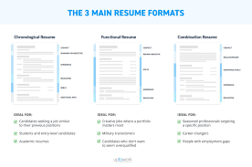 Example Of Three Main Resume Formats Infographic 6 Medmoryapp Com