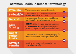 graphic showing common health insurance terminology