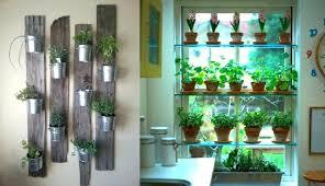 indoor herb planters herb planter indoor large size of wall herb garden kitchen herb planter indoor